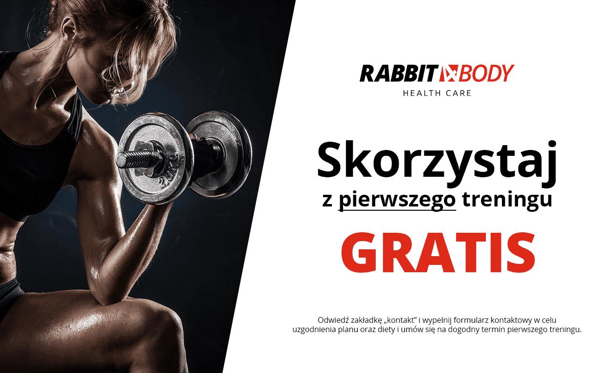 rabbit4body